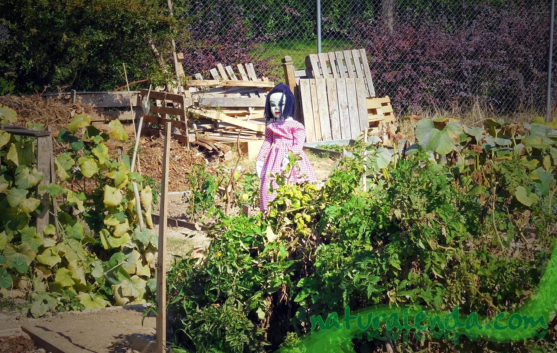 Muñeca espantapajaros