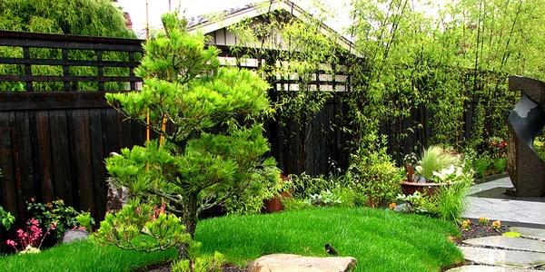 Aneka inspirasi Desain Rumah Taman Indah yg inspiratif