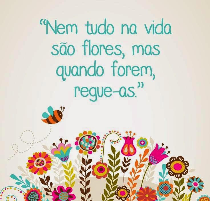 Vida II