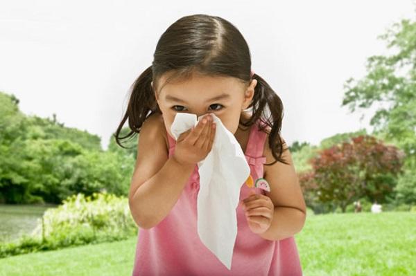 Phân biệt cảm cúm và viêm  mũi dị ứng