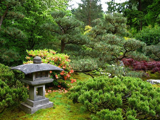 urban landscape native landscape portland japanese garden