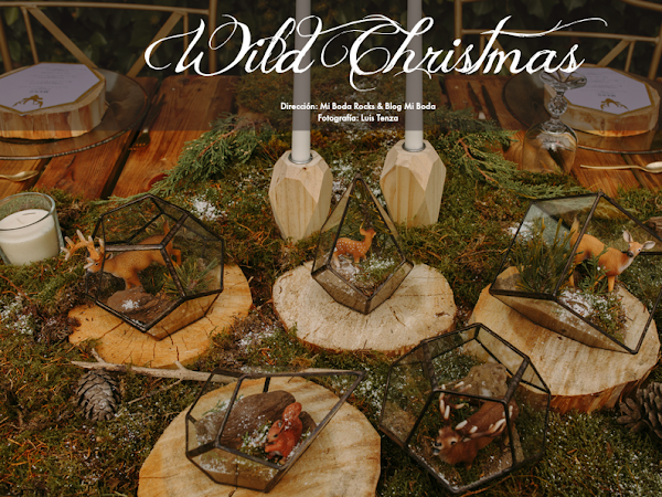 WILD CHRISTMAS - Editorial Mi Boda Rocks & Blog Mi Boda
