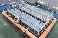 Floating Solar Installations more Reliable and Ecofriendly