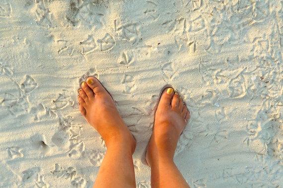 human feet and seagull foot prints in the sand in Playa Del Carmen Mexico