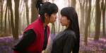 The Gu Family Book