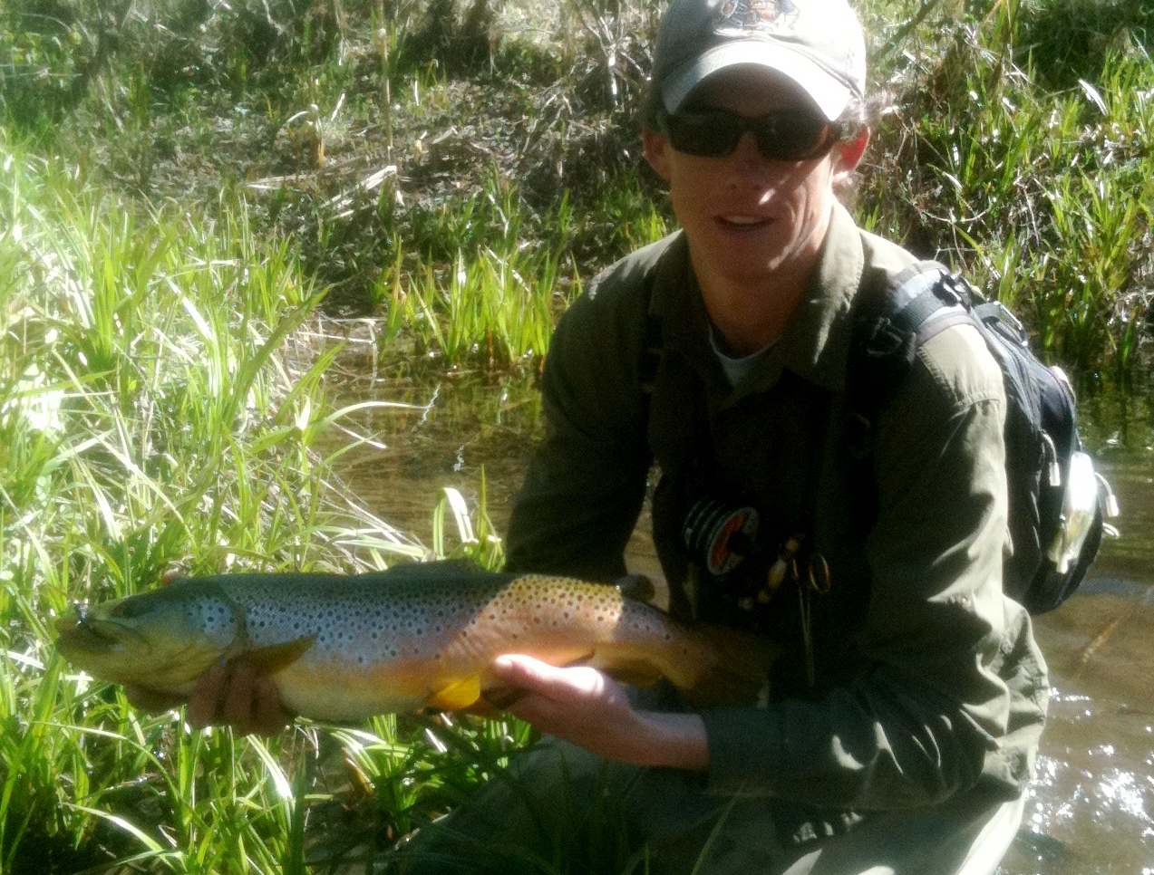 Arizona fly fishing east clear creek for Trout fishing in az