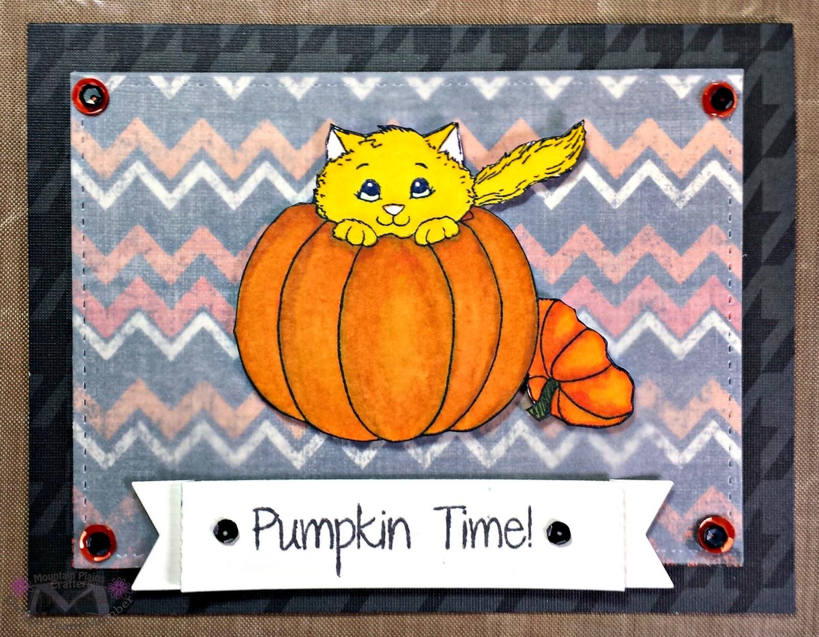 cat in pumpkin card