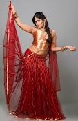 Rithika sizzling portfolio photos-thumbnail-7