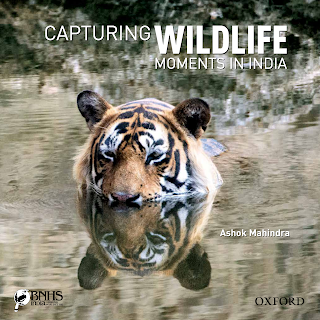 Book Review | Capturing Wildlife Moments in India