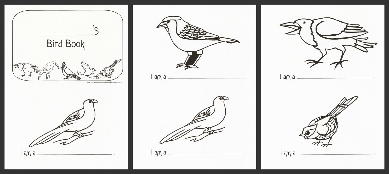 Printable Birds Book Coloring Coloring Pages