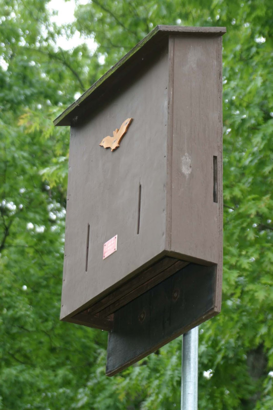 Mn dnr bat house plans House design plans