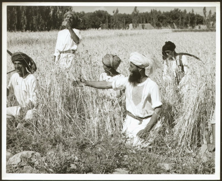 Rural Development in Afghanistan - c1960's