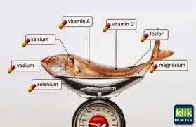 ikan memiliki khasiat yang tinggi untuk tubuh