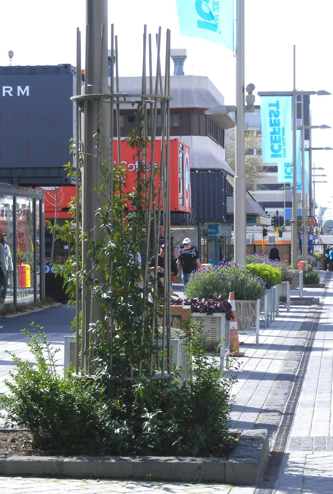 Rachel callaghan landscape architect nz container city for Landscape design courses christchurch