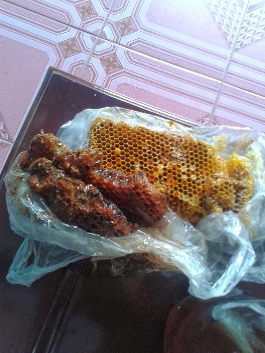 Tac dung cua Mật Ong Rừng, mật ong rừng tốt nhất 3
