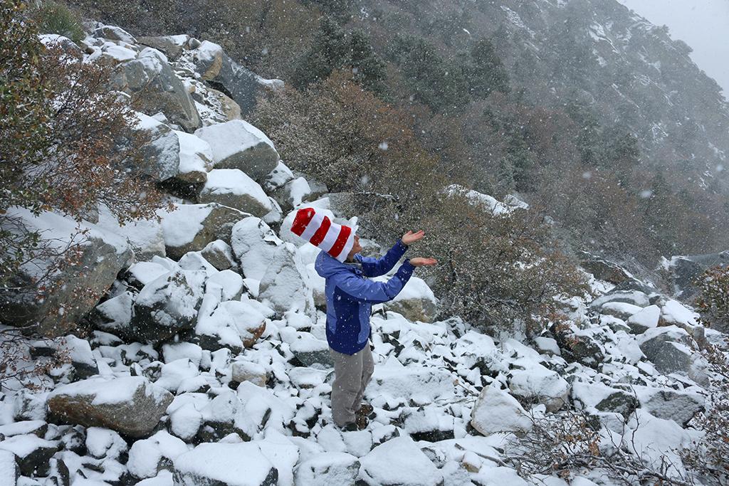 Seuss in the Snow