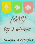 CAS top 3