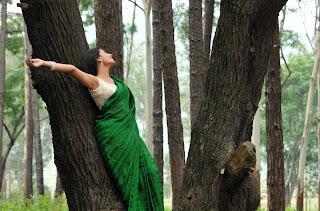 Actress-Nikitha-Narayan-high-resolution-Hot-Saree-Wallpaper-Photos_actressphotosgalleryhub.com_02.jpg