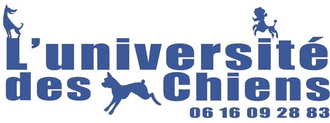education canine, école du chiot et agility près d' Annecy