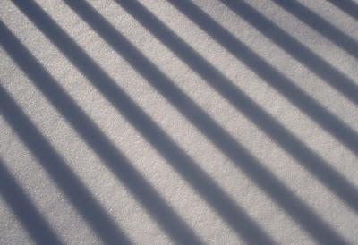 shadows in snow