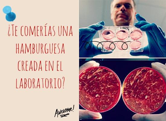 carne-de-hamburguesa-laboratorio-opinion