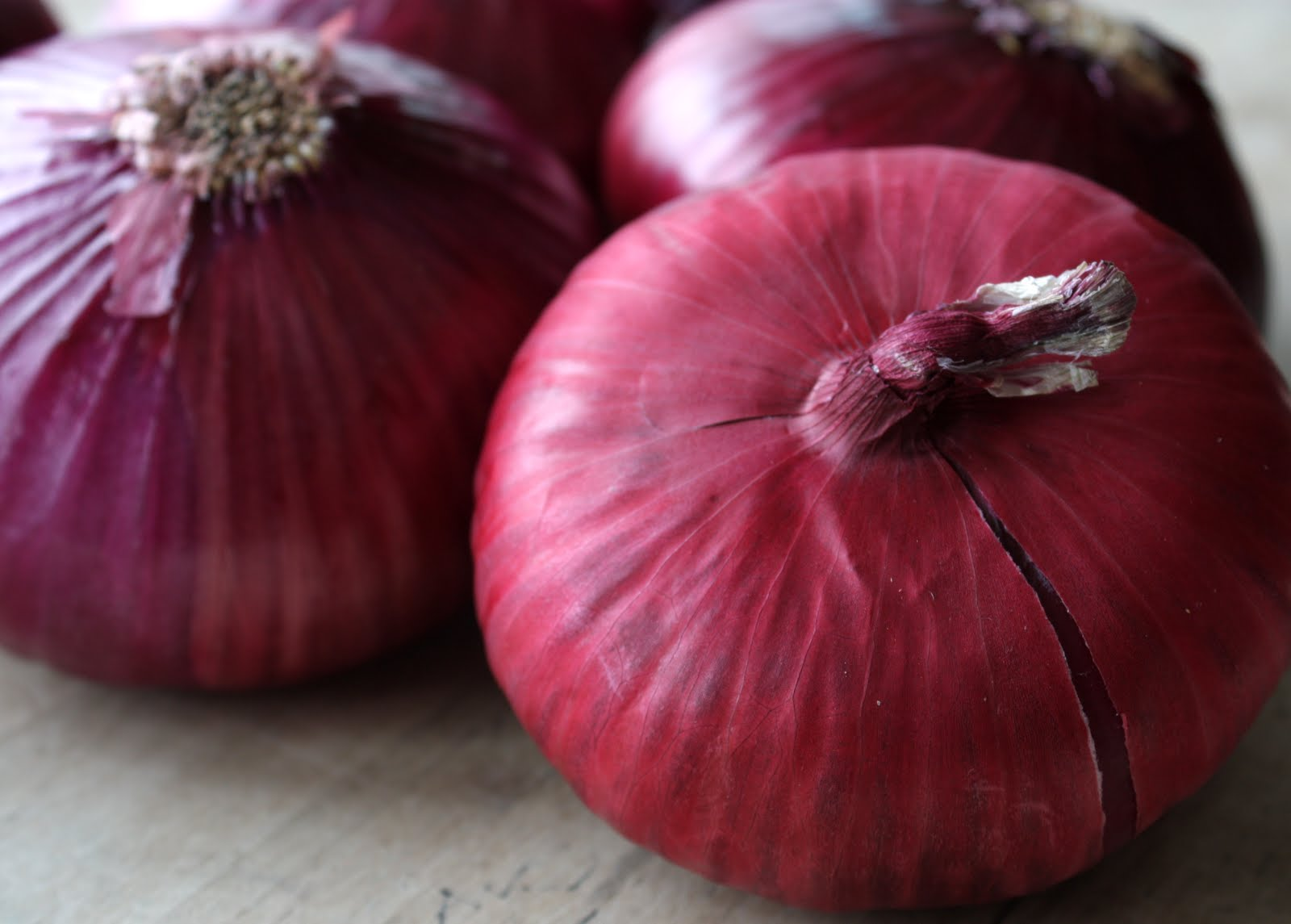 lil fish studios: dyeing with red onions
