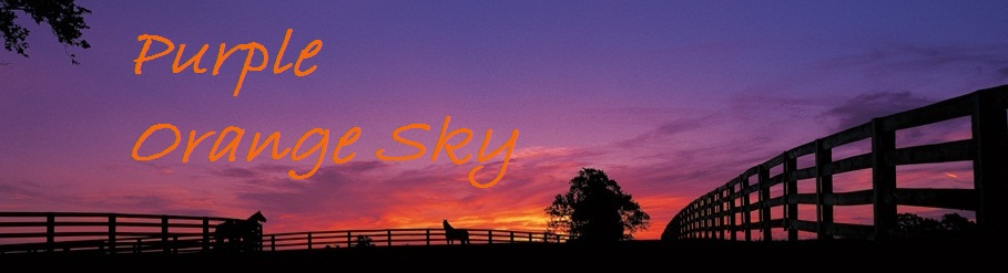 Purple Orange Sky