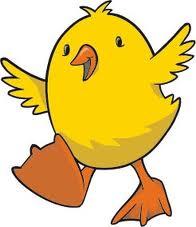 polluelo pipí