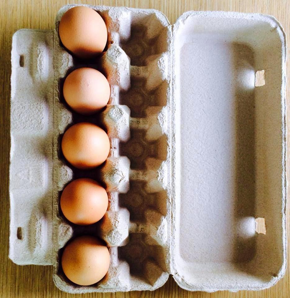 กล่องไข่กระดาษ 10 ฟอง