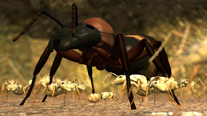 Ant Simulator has been cancelled