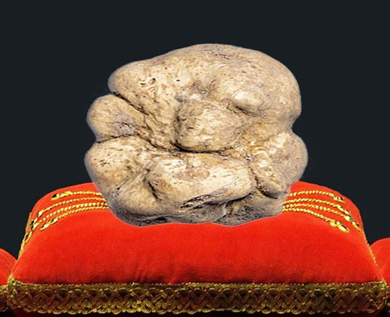 Los 5 alimentos más caros del planeta: trufa blanca de Alba