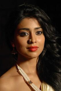 Shriya Saran hot pose