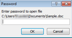 password pada file office