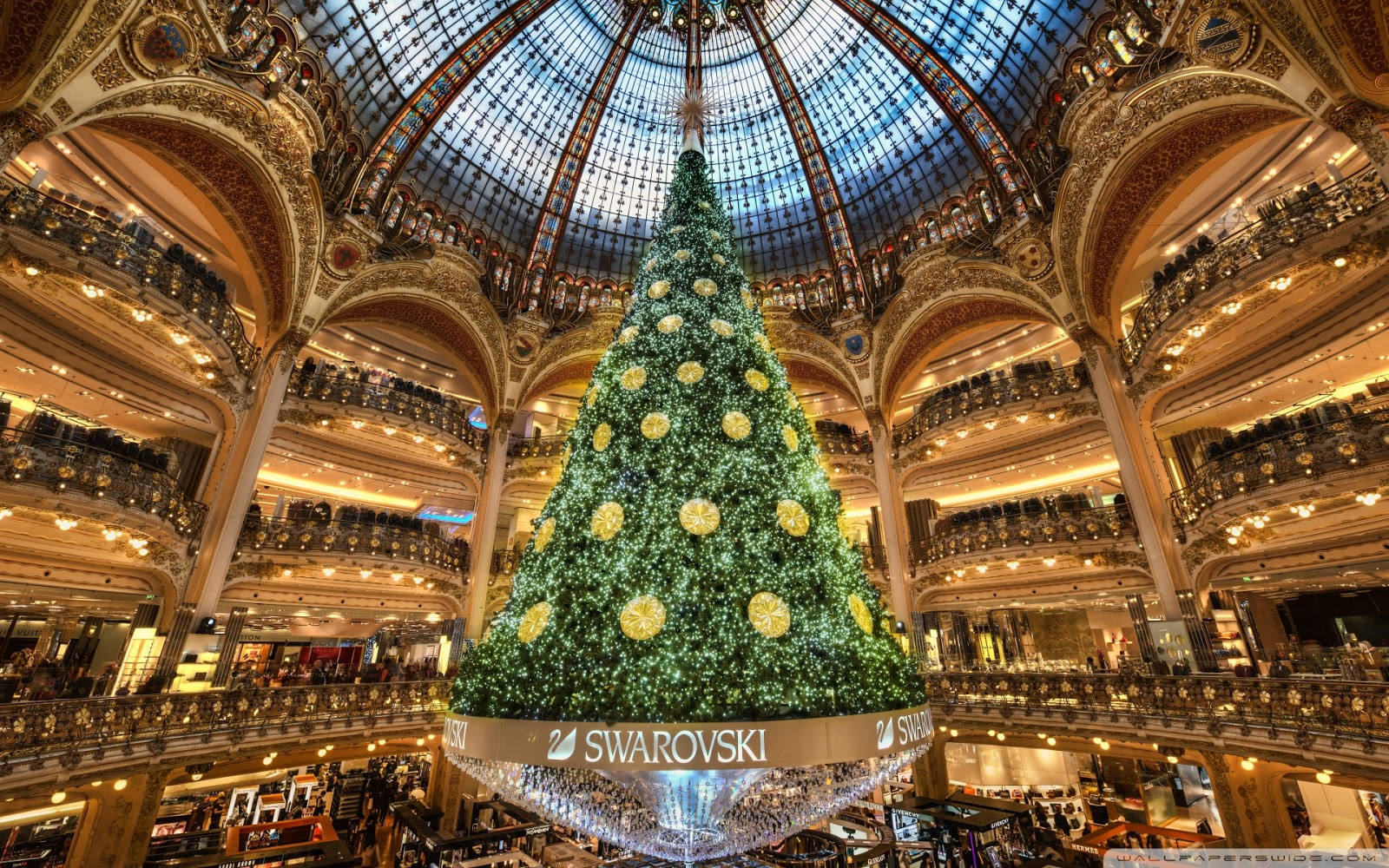 Biggest Most Beautiful Christmas Tree
