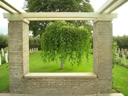 5 buone ragioni per piantare un albero in giardino for Piantare un giardino