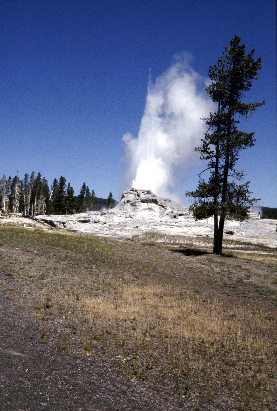 Another cool geyser