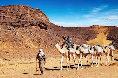 Caravana de camellos pasando por Algeria, Desierto del Sahara. Tuareg cameleer leads camels caravan, Sahara Desert, Algeria.