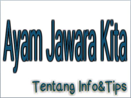AYAM JAWARA KITA
