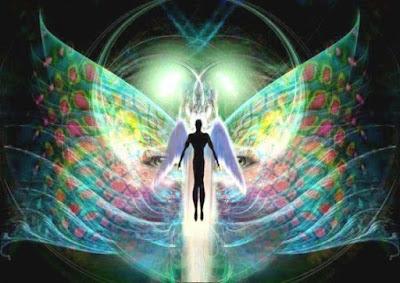 Meditando e Transformando