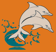 Dolphin Shout