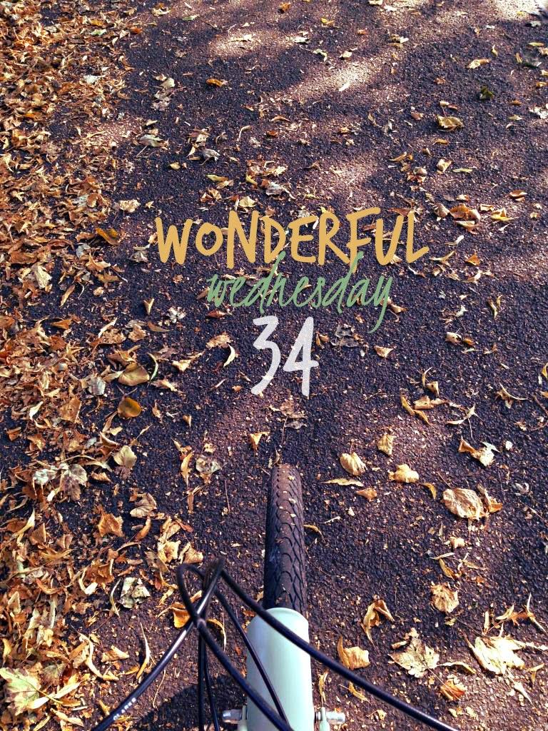 Wonderful Wednesday #34
