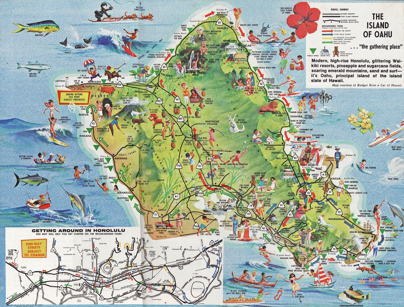 Island and City Maps for Oceania and the Pacific Stadskartor och – Kauai Tourist Map