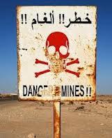 Red de Estudios sobre Efectos de Minas Terrestres y Muros en el Sahara Occidental