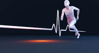Princípios básicos de Treinamento x Fisiologia do Exercício