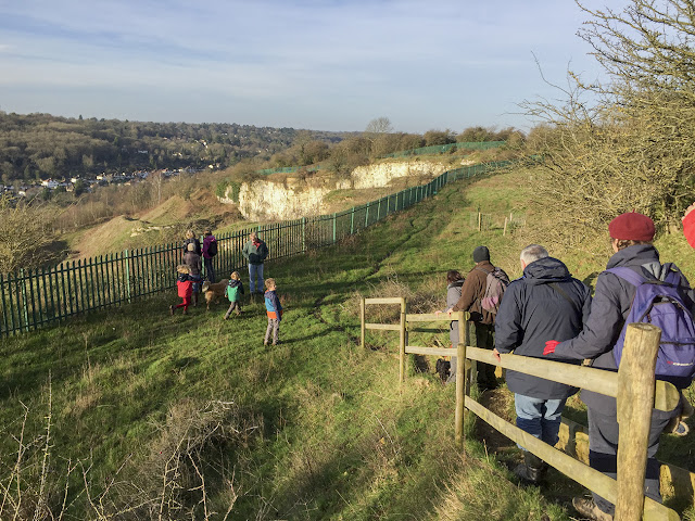 The fenced area above Riddlesdown quarry.  28 December 2015.