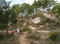 El corriol a estones és tortuós i ha de salvar grossos rocs en mig del bosc de pins