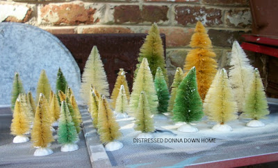bleaching bottle brush trees, Christmas