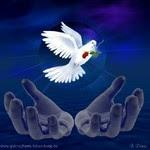 Cintailah Perdamaian