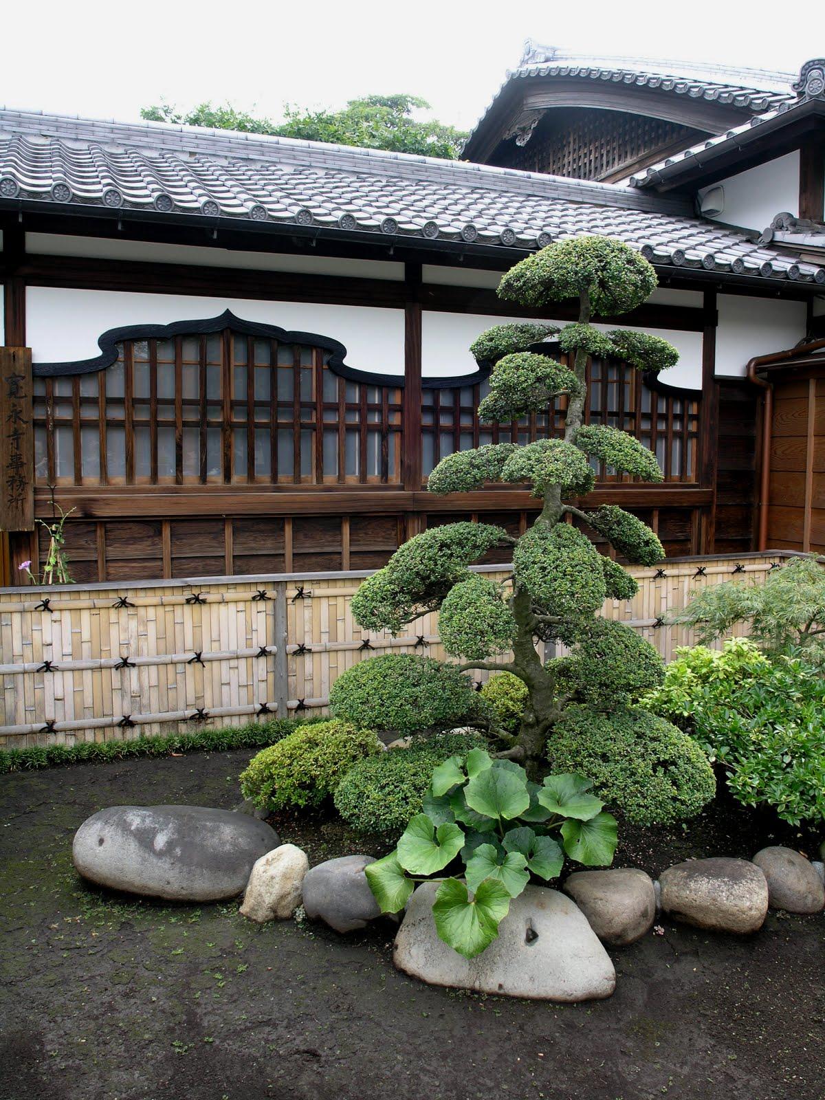 Planeta dunia los colores de un jard n japon s for Jardin 7 colores bernal