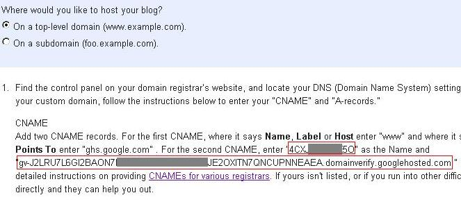 cara setting custom domain